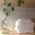 Tvättlappar och bara vanligt vatten