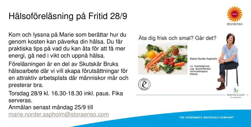 Föreläsning StoraEnso
